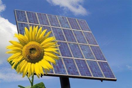energías renovables, cultivarsalud