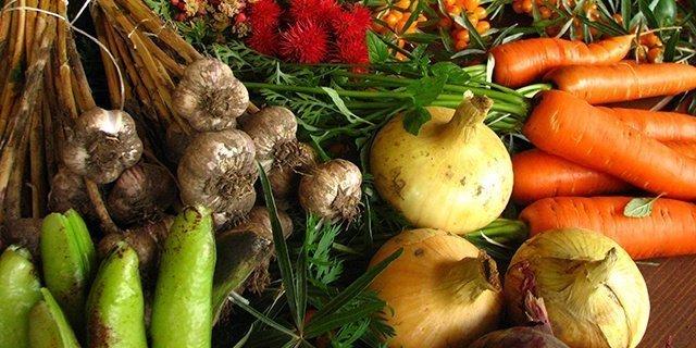 alimentos ecológicos, cultivarsalud