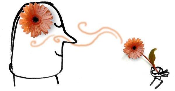 aromaterapia, red cultivarsalud