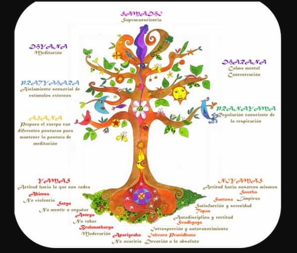 los-ocho-pasos-del-yoga, red cultivarsalud