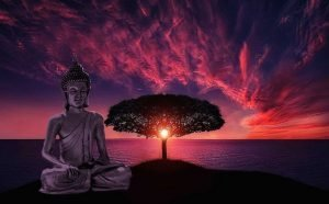 buddha-785866_640