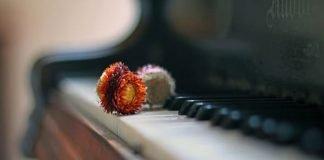 música clásica para la concentración