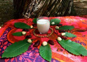 Chestnut&tigernut milk