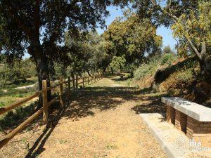 Casa-rural-Adamuz-Molino-Almona_28