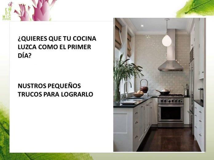 la cocina: untos críticos de limpieza
