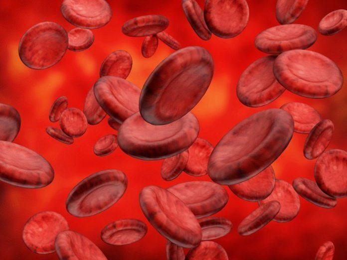 como purificar la sangre