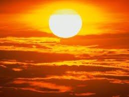 cómo combatir una ola de calor