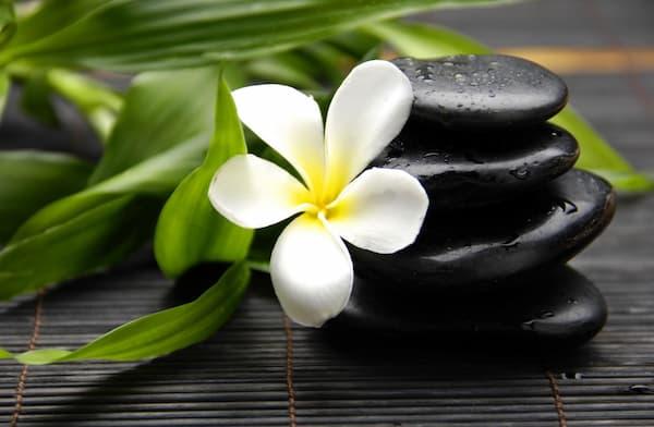 toque zen