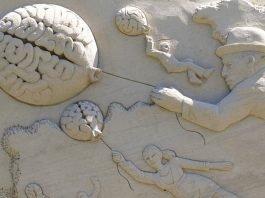 cerebro feliz
