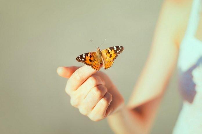 Mindfulness nos ayuda a adaptarnos