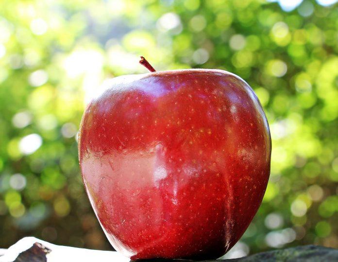 fruta con piel