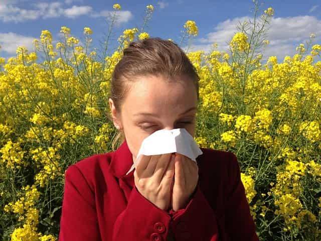 alergias ¿Que son y como tratarlas?
