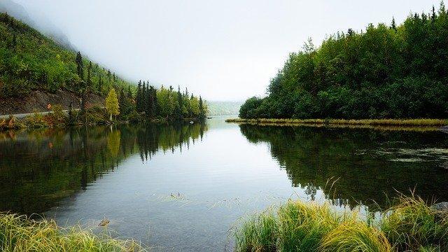 Cinco gestos por el medio ambiente y nuestra salud