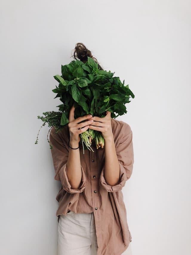 ecomendaciones para ser vegano