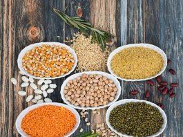 fuentes de proteinas vegetales