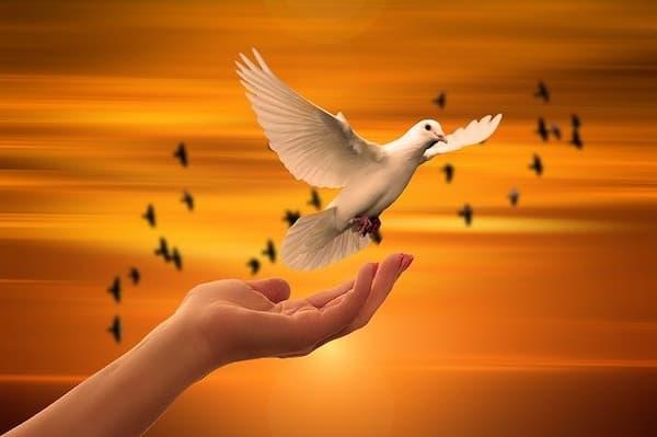 respeto a la vida espiritual